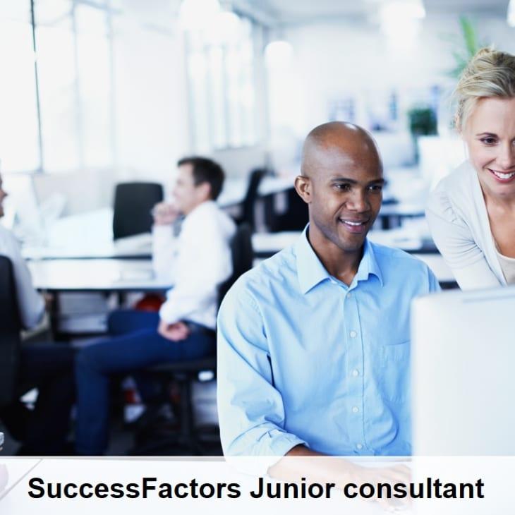 Sf jr consultant huris for Junior consultant